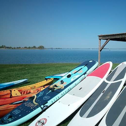 Premier sur la location de Stand Up Paddle au Lac du Der